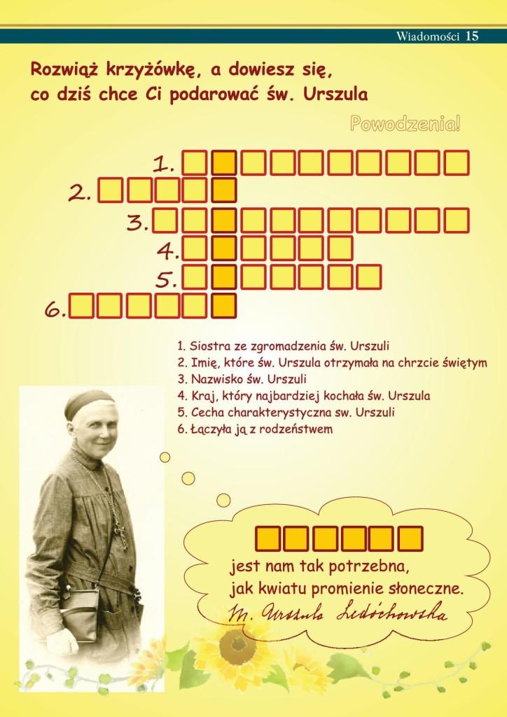 15WIADOMOŚCI_5internet